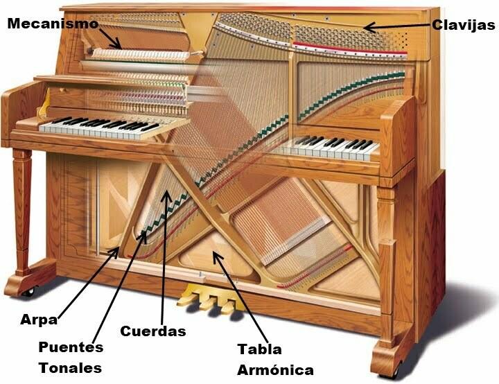 Curso De Reparación Profesional De Pianos Tecnopiano Com